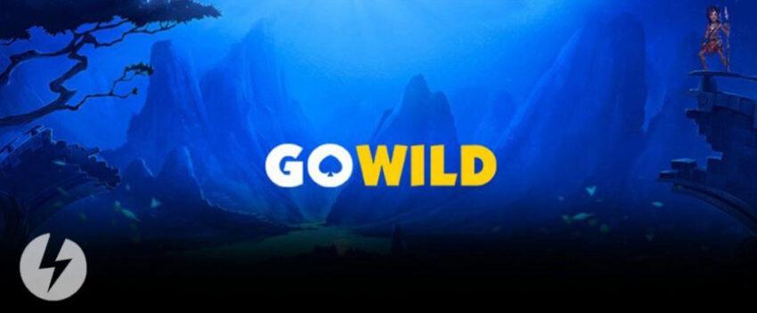 go-wild-casino-casinokokemus
