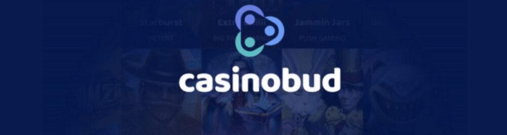 casinobud casinokokemus