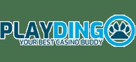 playdingo png logo